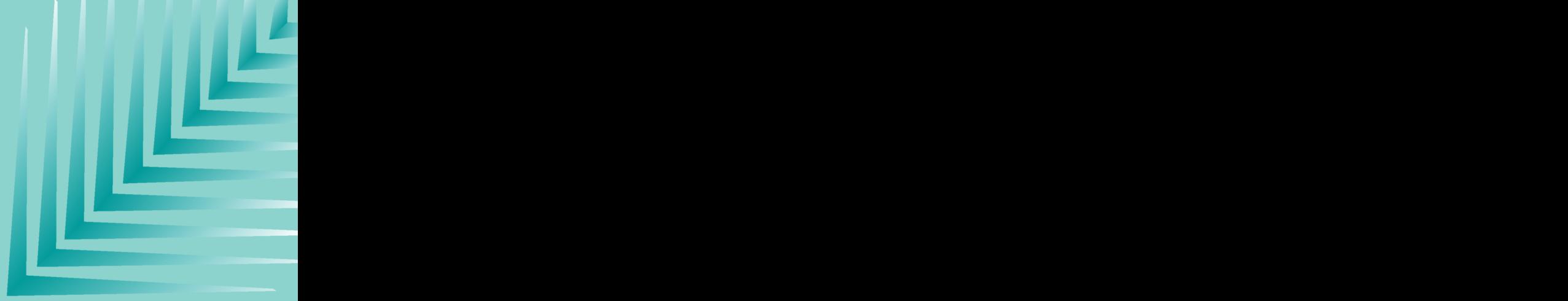 Logo_Preto_Toclam